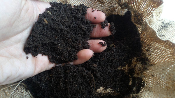 Hand-with-Compost